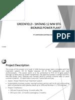 Executive Summary - Sintang 12 Mw Btg Biomass Power Plant