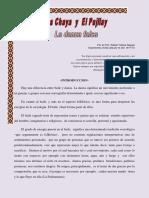 Chaya y Pujllay.pdf