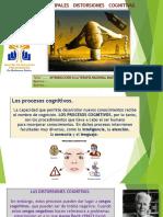 Presentación1 DISTORSIONES COGNITIVAS