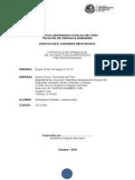 informe psp terminales del peru johana dominguez - para tdp.docx