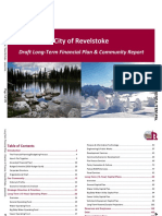City of Revelstoke draft financial plan 2019