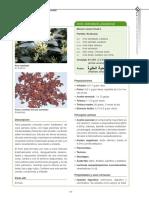 254918-343907-1-PB.pdf