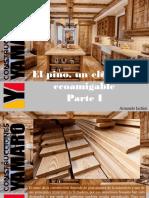 Armando Iachini - El Pino, Un Elemento Ecoamigable, Parte I
