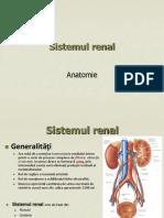 Prezentare sistemul urinar1