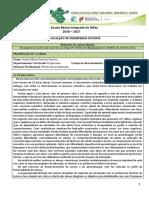 Avaliação_desempenho_2016_17_Estela.docx