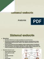 Prezentare sistemul endocrin2