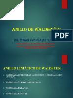 anillodewaldeyerhipertrofiadeadenoamigdalasdr-170430192020