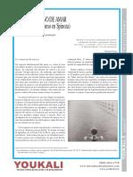 Sainz Pezonaga, A. - El deseo activo de amar (afecto y materialismo en Spinoza) [Youkali, nº 03, 2007].pdf