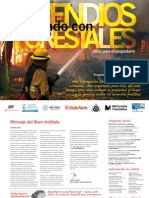 BI-Guia Para Incendios Forestales[1]