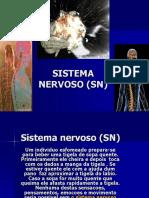 SNC Anatomo-fisiologia Novo - Cópia