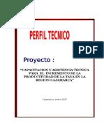Proyecto Regional Taya-Corregido