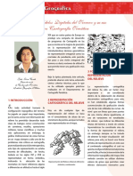 Los Modelos Digitales del Terreno[1].pdf
