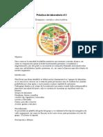 prcticadelaboratorio-100905102411-phpapp02