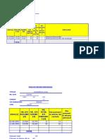 99221875 Foaie de Parcurs Individuala Model