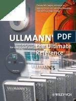 Ullmanns Flyer