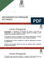 Aula 3 - Mecanismos de Formação Do Cavaco
