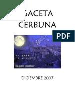 Gaceta 2007