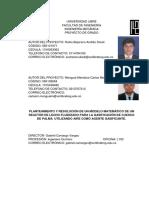 PLANTEAMIENTO Y RESOLUCIÓN DE UN MODELO MATEMÁTICO DE UN REACTOR DE LECHO FLUIDIZADO PARA LA GASI.pdf