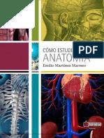 Cómo Estudiar Anatomía (Pg 1 4)