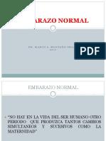 Embarazo Normal 17