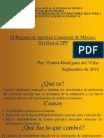 ElProcesoDeAperturaMéxico