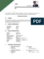CURRICULUM VITAE - InG. Tamayo_Vidal_Alexander - Egresado