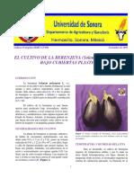 4. El Cultivo de La Berenjena (Solanum Melongena l.) Bajo Cubiertas Plasticas