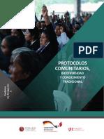 Protocolo Comunitario México