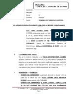 Demanda de Tenencia y Custodia - Yesy Yendy Salcedo Coris1