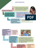 Pueblos Indigenas (1)