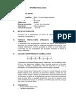 Informe Psicologico Evaluacion y Diagnostico