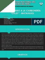 CARBONERÍA-MATAHIUASI.pptx