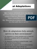 Animal Adaptations 4th Grade Tc
