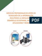 Servicios Profesionales de Apoyo en Tecnología de La Información