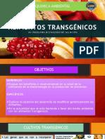 Alimentos Trangenicos Bioquimica 1