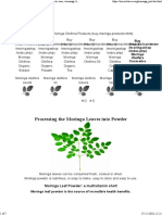 All About Moringa Tree
