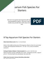 8 Top Aquarium Fish Species for Starters