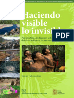 FPP_AIDESEP Peru Deforestation Study_low