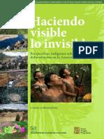 FPP_AIDESEP Peru Deforestation Study_low
