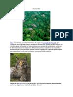 Biodiversidad en El Mundo