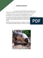 Crianza de Cerdos Churubamba