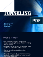 Sheena Fulleros Tunneling