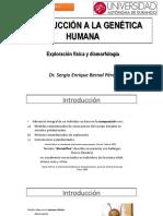 Universidad Autonoma de Durango - Exploración Física Genética y Dismorfología
