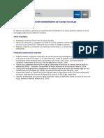 Ficha Modelacion Hidrodinamica 2011