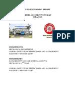 DLW Summer Training Report 2018(1)