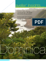 TravelersInsights-dominica (lowres)