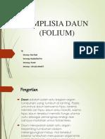 Simplisia Daun (Folium)