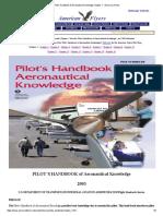 Pilot's