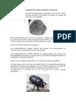 Los baculovirus como agentes de control microbiano de insectos.docx