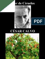 César Calvo - Olor de Ciruelos - poesía